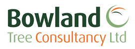 Bowland Tree Consultancy